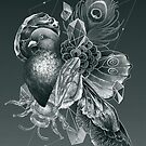 Iridescence by Franz Anthony