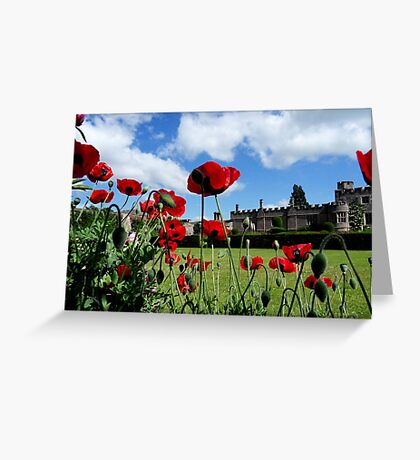 The Dancing Poppies Greeting Card