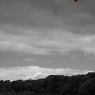 One Red Kite by James Stevens