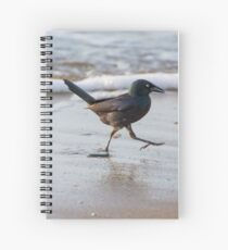 Grackle at the Beach Spiral Notebook
