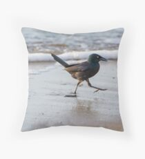 Grackle at the Beach Throw Pillow