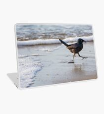 Grackle at the Beach Laptop Skin