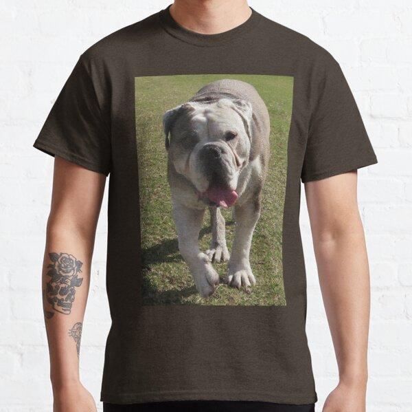 Bulldog strolling toward me Classic T-Shirt