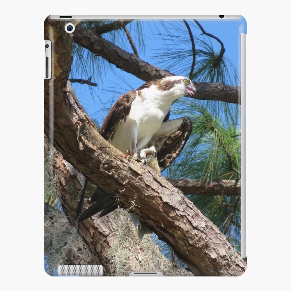 Osprey, the Sea Hawk iPad Case & Skin