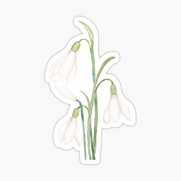 angelic snowdrop flowers watercolor Sticker