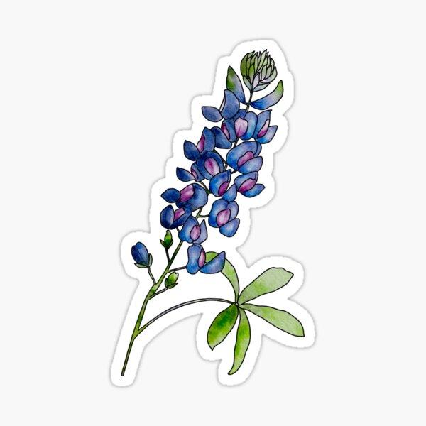 Texas blue bonnet wildflower Sticker