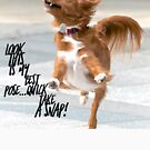 """Funny Dog Shirt, """"Look this is my best pose...quick take a snap!"""" by M. I. Speer"""