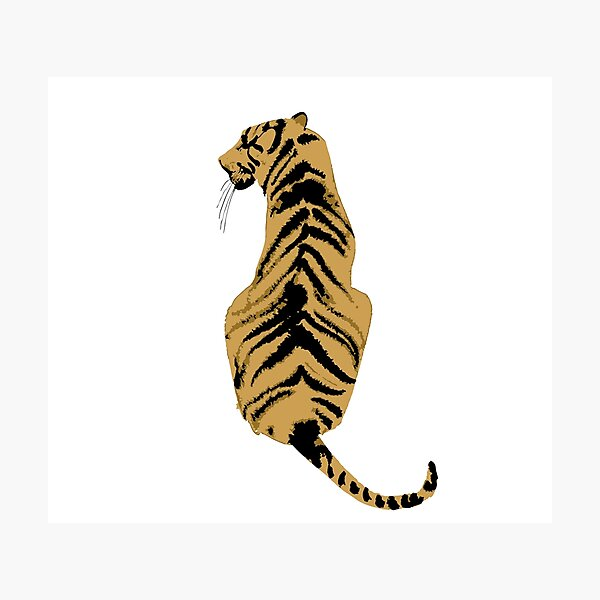 graphic back tiger Photographic Print