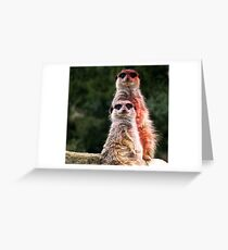 Lookouts  Greeting Card