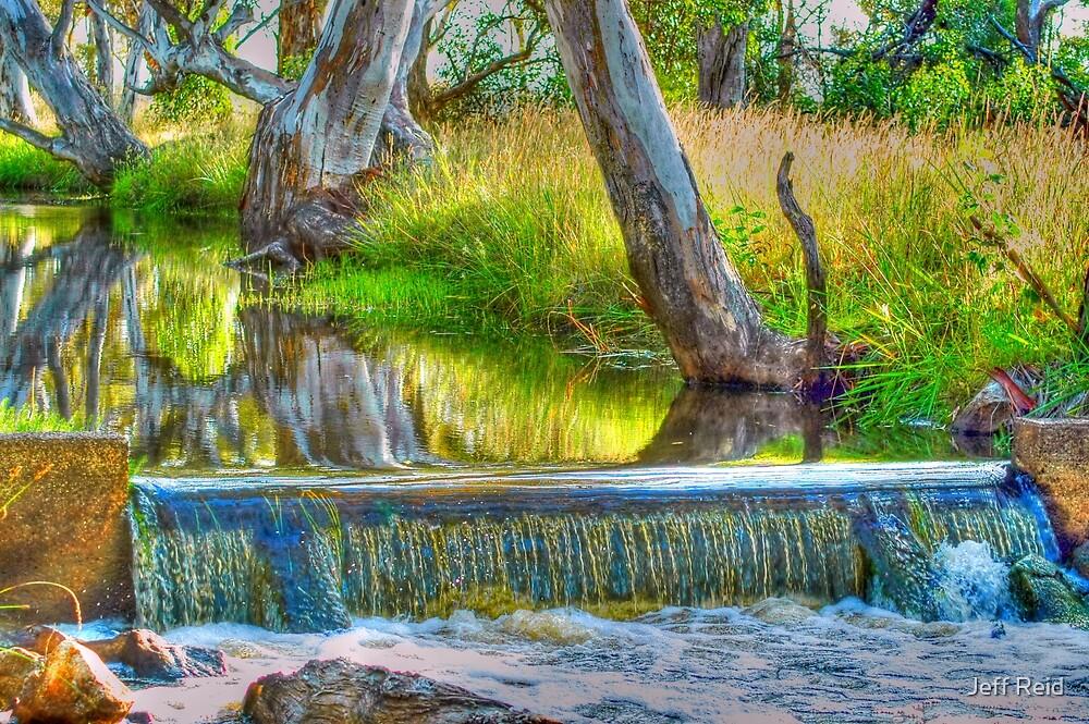 Early Water by Jeff Reid