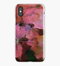 Autumn Moods 1 iPhone Case/Skin
