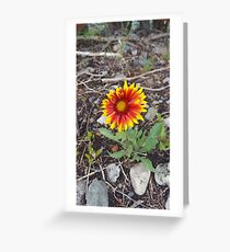 Tarjeta de felicitación Bonita flor pequeña