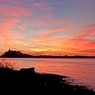 Nobby's Pink Sunrise by Liz Percival