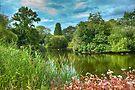 Dulwich Lake HDR: London, UK. by DonDavisUK