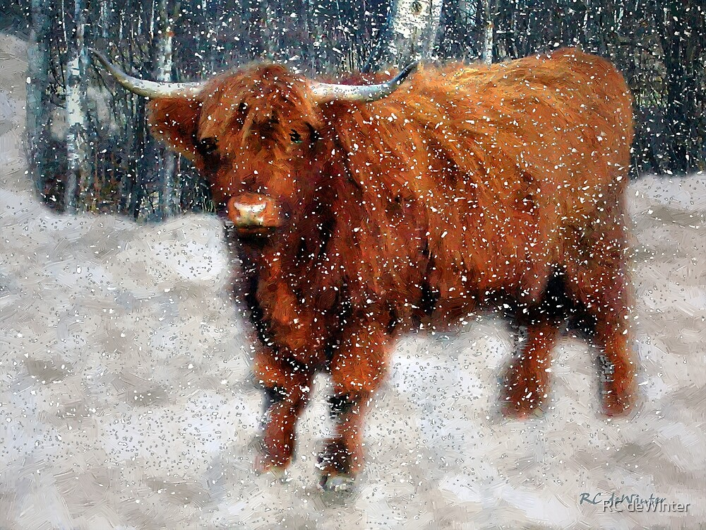 My Feets Are Cold by RC deWinter