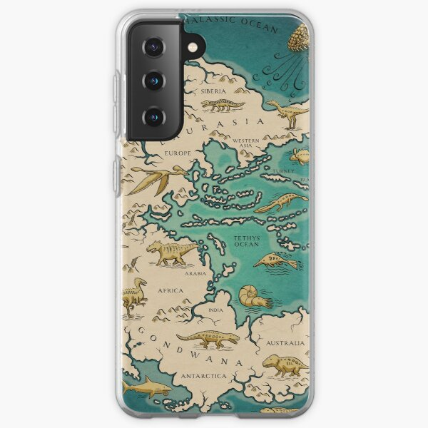 map of the supercontinent Pangaea Samsung Galaxy Soft Case