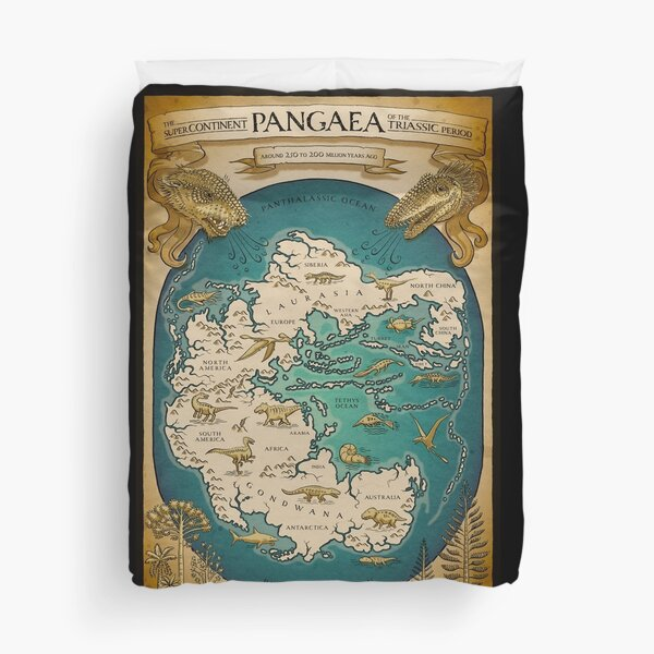 map of the supercontinent Pangaea Duvet Cover