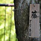 Kamakura 2 by redbruisemouse