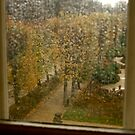 View From the Rodin by Virginia Kelser Jones