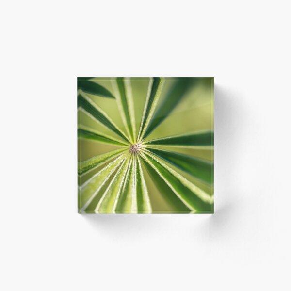 Lupine Leaves Acrylic Block
