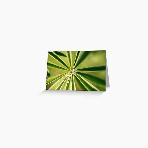 Lupine Leaves Greeting Card