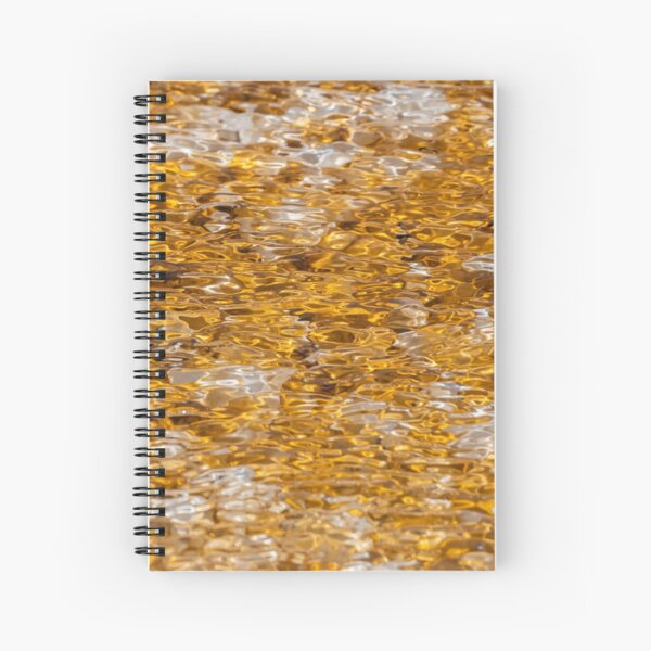 Canary Springs Orange Spiral Notebook