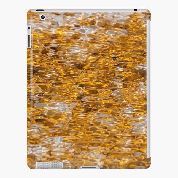 Canary Springs Orange iPad Snap Case