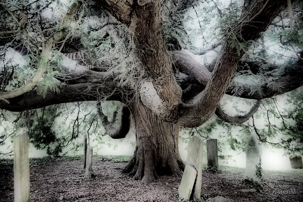Tree in The Churchyard by KarenM