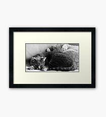 Dali and Vincent Framed Print