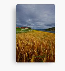Views: 4470 .The DeeZ 5Cs Award Banner. Verrasundet Sor-Trondelag . Norway. Brown Sugar Story . This image Has Been S O L D .  Brilliant work Canvas Print
