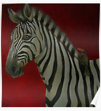 Zebra with oxpecker. Poster