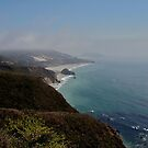 big sur, california by petalpress