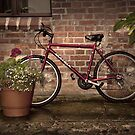 Red Bike Story by Danuta Antas