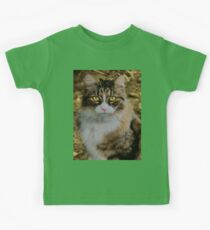 Green eyes  Kids Clothes