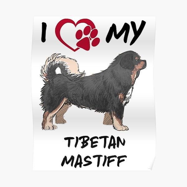 I Heart My Tibetan Mastiff Poster