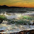 Carmel River Beach by Maria Draper