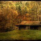 Wood Smoke Burnin',  Leaves are Turnin' by Christine Annas
