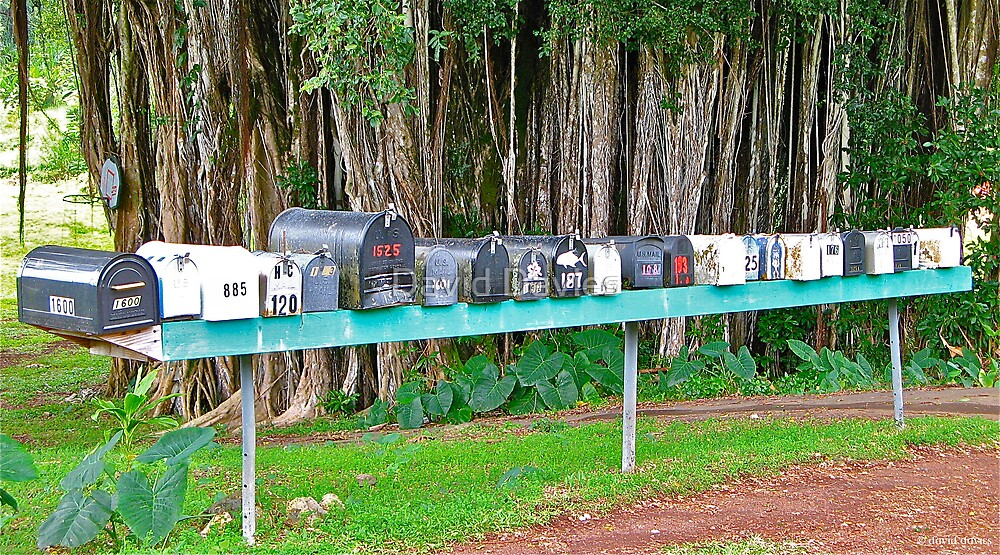 Hana Highway Postboxes by David Davies