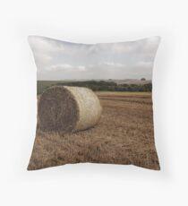Hay Bale Throw Pillow