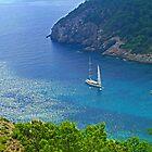 Bucht von Cala Llonga III von Tom Gomez