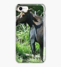 Bull Moose iPhone Case/Skin