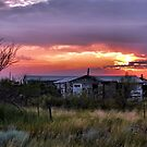 A West Texas Summer Evening by Carla Jensen