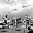 Baltimore Inner Bay Chromed by InvictusPhotog