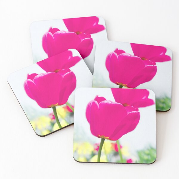 Hot Pink Prelude Coasters (Set of 4)