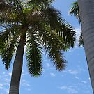 Feeling nice - Tropical series by Earl McCall