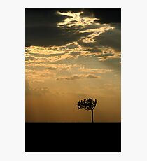 Sunset Over Masai Mara, Kenya Photographic Print