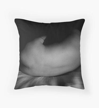 i fell from a great height (sheltered rapture)  Throw Pillow