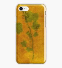 Ribes sanguineum iPhone Case/Skin