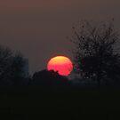 Sunset Calendar 03 by Peter Barrett