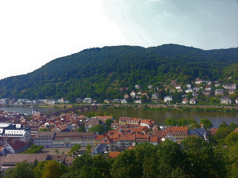 Neckar from Schloss Heidelberg by tomeoftrovius